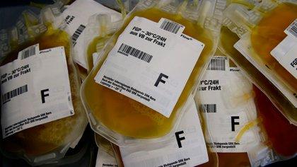 Existe mucha evidencia anecdótica sobre el éxito terapéutico del plasma que contiene los anticuerpos de alguien que se recuperó de una enfermedad infecciosa. (Reuters)