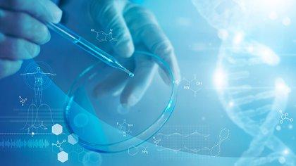 el tratamiento y el pronóstico de la enfermedad hepática tóxica depende de la gravedad de la lesión y de la causa subyacente (Shutterstock)