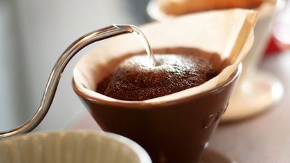Arabica and robusta are produced in Mexico (Photo: Shutterstock)
