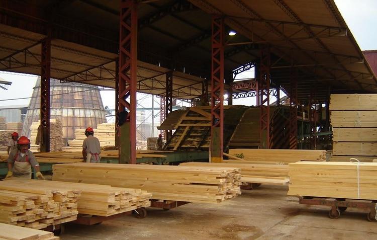 El sector maderero sufre una profunda crisis que el robo de madera la acrecienta