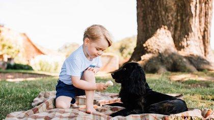 Una de las fotografías oficiales del príncipe George con la mascota de la familia real