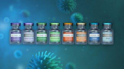 Ya son varias las vacunas desarrolladas y aprobadas contra COVID-19 (Shutterstock.com)