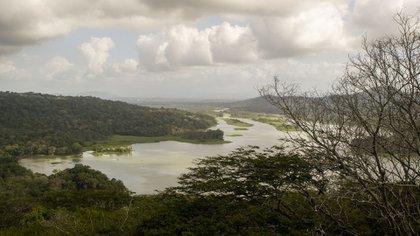 La represa Gatún fue construida entre 1907 y 1913. Elemento crucial del canal de Panamá. Este embalsa al lago Gatún que forma parte del corredor bioceánico a través del istmo de Panamá