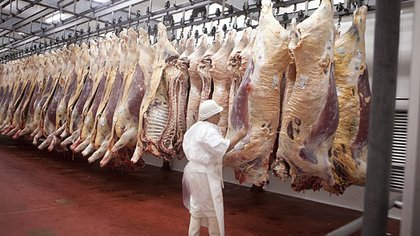 Cuando China vuelve a demandar carne vacuna, se frenan los envíos locales de Cuota Hilton a Europa