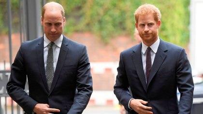 Los príncipes Harry y William están distanciados desde el Megxit  (Shutterstock)