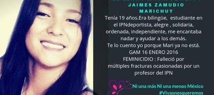 (Foto: Facebook Ni una Chuy menos)