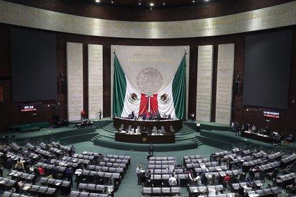 La Cámara de Diputados aprobó la extinción de 109 fideicomisos con una discreta mayoría (EFE/ Cámara De Diputados)