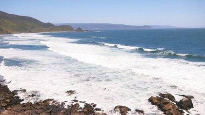 Desde el norte de la península antártica argentina y el sur de las islas de Tierra del Fuego y de los Estados existe uno de las zonas más ricas de biodiversidad marina en el mundo