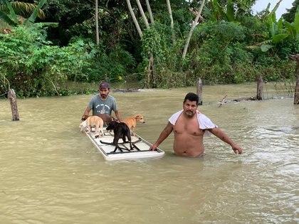 En Macuspana, pobladores trasladan a sus mascotas en una mesa flotante debido las anegaciones en la mayor parte del territorio, ya que es una planicie y debido a las inundaciones históricas no vistas en 50 años Jesus Castellanos Perez/ vía REUTERS