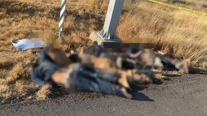 Balacera de 3 días entre Zetas y CG, deja 46 muertos en Zacatecas. SZKGYEA6FJF7ZPZHBF7XU3QWEA
