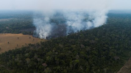 Vista aérea de los efectos de un de incendio en la Amazonía de Rondonia (Brasil). EFE/Joédson Alves/Archivo