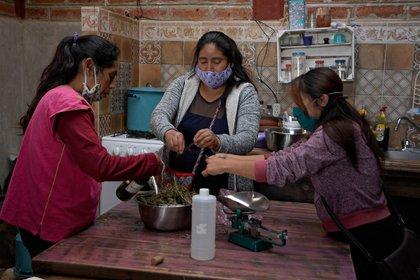 López Aparicio fue defensor de los derechos de las comunidades indígenas y ayudó a consolidar el INPI (Foto: Carlos López/ EFE)
