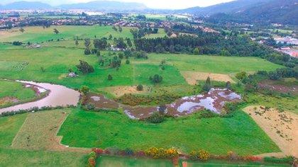 "Reserva Forestal Productora del Norte de Bogotá ""Thomas Van der Hammen"". Foto: CAR"