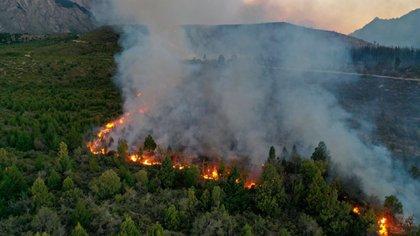 """El incendio forestal que afectó 8.000 hectáreas en la localidad de rionegrina de El Bolsón Río Negro, con """"muy grave"""" daño ambiental, llegó hasta la provincia de Chubut, cerca de la localidad de El Maitén (Radio FM del Pueblo 90.7)"""
