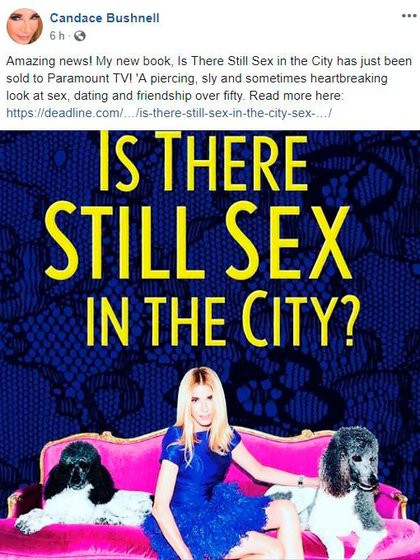 La autora de Sex and the city publicará un nuevo libro que será llevado a la televisión