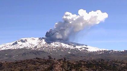 El temblor que antecede a la furia: registros sísmicos ayudarían a anticipar erupciones del volcán más activo de Argentina