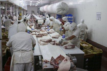 Por casos positivos en empleados, seis frigoríficos decidieron temporalmente dejar exportar a China (Augusto Famulari)