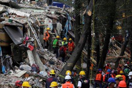 Las tareas de rescate en México (Reuters)