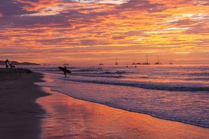 Más de una cuarta parte de Costa Rica disfruta de alguna forma de protección ambiental. El Parque Nacional de la Isla del Coco, la única isla en el Pacífico oriental con una selva tropical, es un destino de buceo de clase mundial repleto de tiburones martillo, mantarrayas gigantes, tortugas marinas y delfines