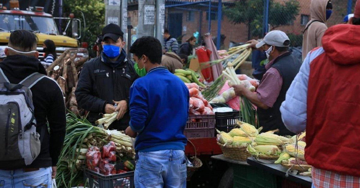 Piden a los bogotanos no hacer compras pequeñas en Corabastos durante la cuarentena  - Infobae