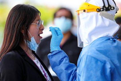 Personal de la secretaria de Salud del Municipio de Quito toma muestras para el test de diagnóstico PCR para coronavirus, en Ecuador  (EFE)