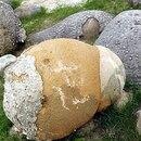 Trovants, las piedras más extrañas del mundo