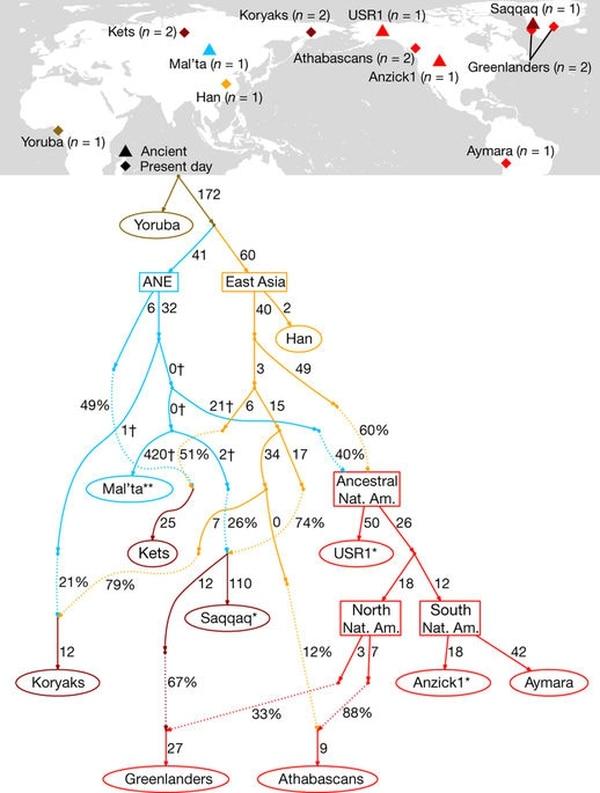 Patrimonio genético de USR1
