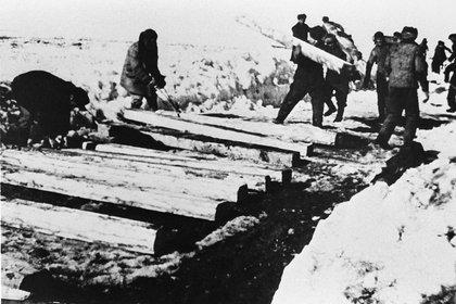 La cifra total de muertes que el sistema del Gulag se cobró no es precisa. Pero los investigadores brindan cifras que oscilan entre el millón y medio y los tres millones de muertos (Sovfoto/Universal Images Group/Shutterstock)