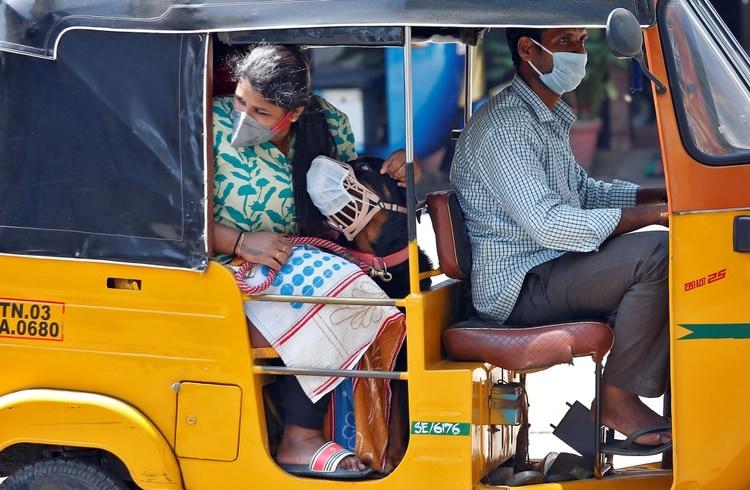 En India, una pasajera, su perro y el conducto deL rickshaw utilizan barbijo