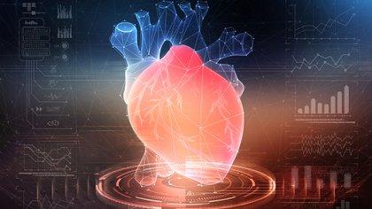 La investigación completa será presentada en las Sesiones Científicas de la Asociación Americana del Corazón (AHA, por sus siglas en inglés) en Dallas el 16 de noviembre (Shutterstock)