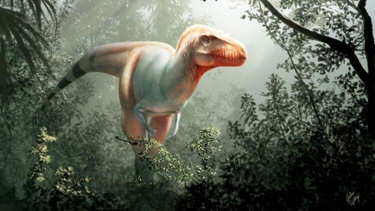 Thanatotheristes Degrootorum descubierto en Canadá en 2010 (Universidad de Calgary y Museo Royal Tyrrell)