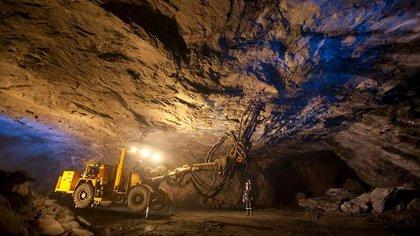 las empresas distribuidoras de carbón mantendrán sus actividades de transporte y logística para satisfacer la demanda de la CFE (Foto: Archivo)