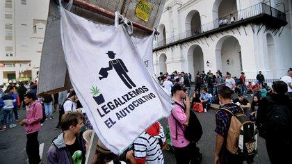 Movilización en Plaza de Mayo para reclamar la legalización del autocultivo (Nicolás Stulberg)