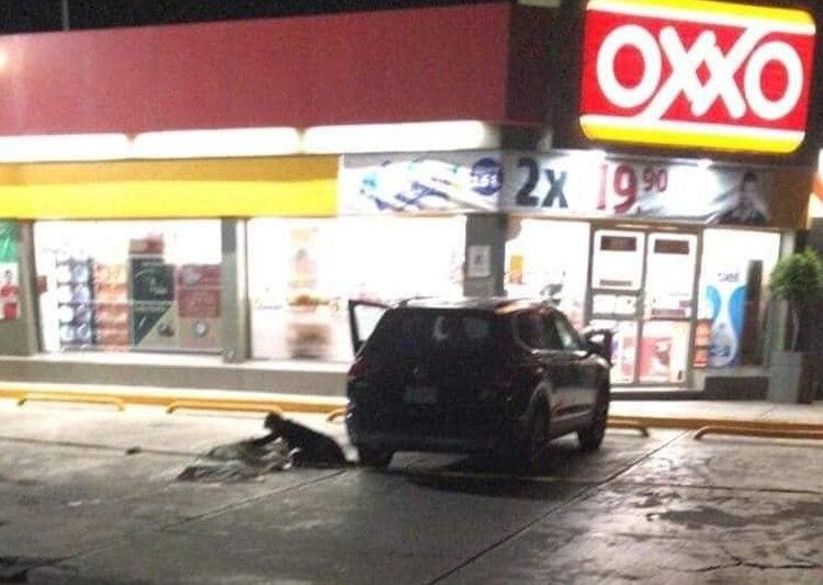 Los hechos ocurrieron ayer por la noche en una carretera de Acapulco (Foto: @Tinta_Romeo)
