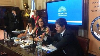 Juan Manuel Abal Medina, Marta Varela y Diana Conti, esta mañana en la reunión de la Bicameral