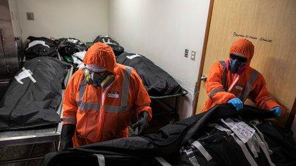 Los trabajadores de la funeraria Piedrangel Luis Zerpa, de Venezuela, y Ángelo Aza, de Perú, se preparan para sacar los cuerpos de personas que se cree que murieron por coronavirus, en la morgue de un hospital, en Lima Perú, el 5 de mayo de 2020. Los hombres forman parte del equipo de la funeraria a quien el gobierno encargó la retirada y cremación de víctimas, presuntas o confirmadas, de COVID-19. (AP Foto/Rodrigo Abd)