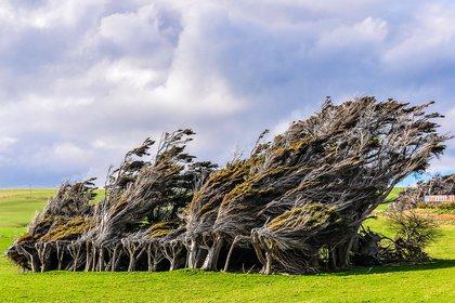 Desde Auckland (en la Isla Norte) hasta Punta Slope (en la Isla Sur) se extienden algo menos de 2000 kilómetros