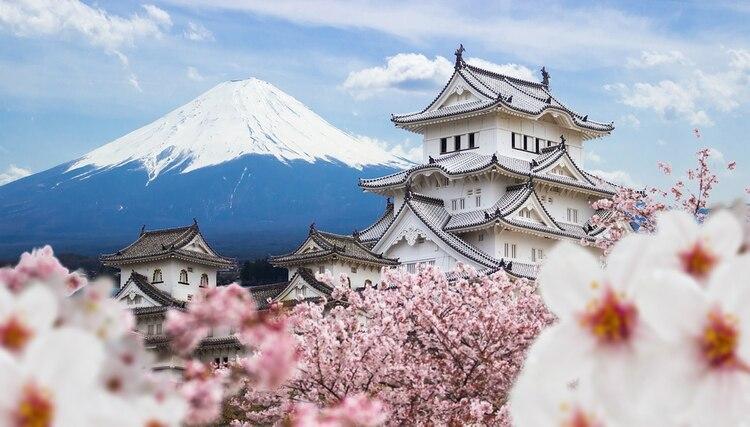 Japón tiene la población más antigua del mundo: los científicos dicen que un tercio de la población de Japón tiene más de 65 años (Shutterstock)