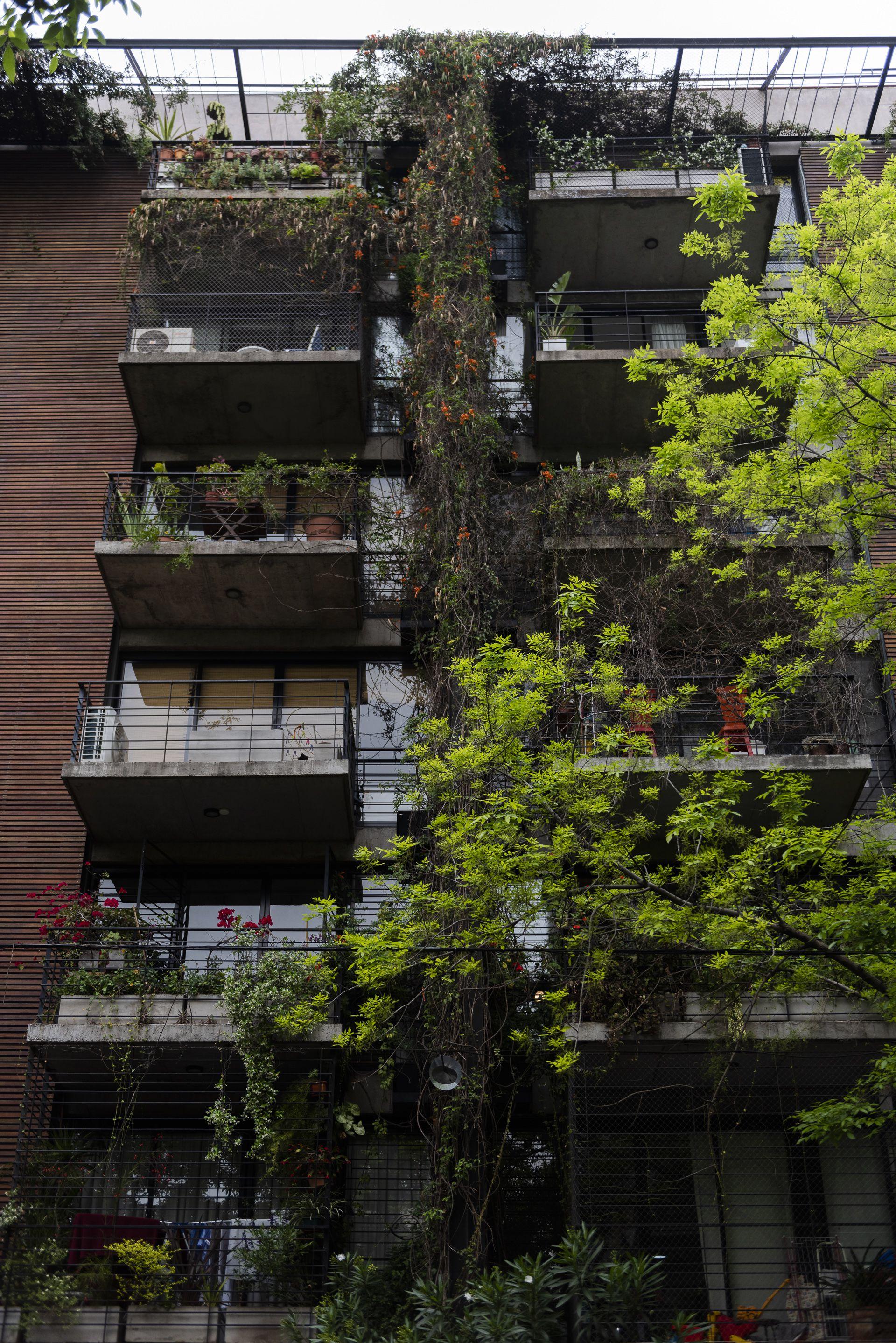 La concepción de un espacio indeterminado permite una forma de habitar desregulada, es un planteo versátil que posibilita los futuros cambios (Adrián Escandar)