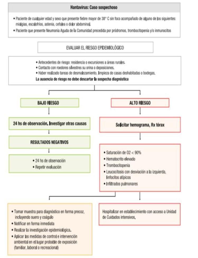 Flujograma de manejo de casos sospechosos de Hantavirus en la Argentina. (Fuente: CEE-SADI)