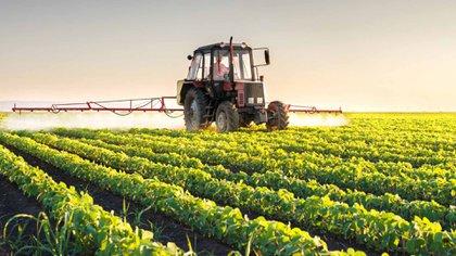 Preocupación en el sector agropecuario y agroindustrial por un posible aumento de las retenciones