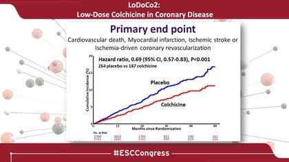 La colchicina mostró -administrada en una dosis diaria de 0,5 miligramos - reducir de manera segura los eventos cardiovasculares entre los pacientes con enfermedad coronaria crónica, según los datos del ensayo LoDoCo2
