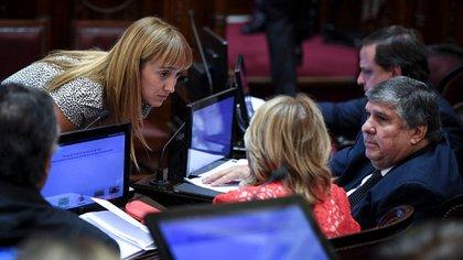 En el Senado el oficialismo insiste en que la mejor forma de sesionar es en forma virtual (Prensa Senado)