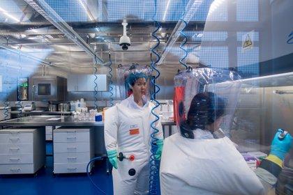 Shi Zhengli en el laboratorio (AFP)