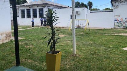 El patio del penal: paredes bajas, pasto y alambre de púa.