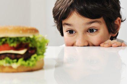 Los índices de obesidad infantil en la región preocupan a las autoridades sanitarias (Shutterstock)