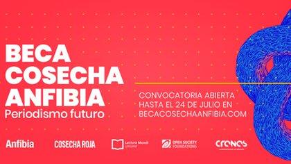 La Beca Cosecha Anfibia es el resultado de la unión entre Revista Anfibia y Cosecha Roja