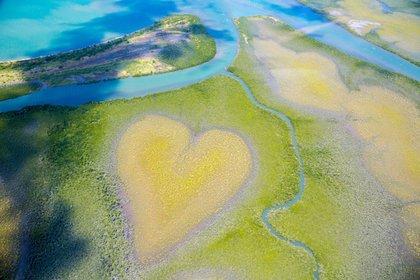Nueva Caledonia es un territorio francés que incluye docenas de islas en el Pacífico Sur. Es conocida por sus playas bordeadas de palmeras y su laguna con abundantes especies marinas que, con sus 24,000 km2, se encuentra entre las más grandes del mundo (Shutterstock)