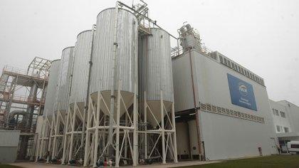 La planta se dedicará principalmente a la elaboración de jarabe de alta fructosa (ARCOR)