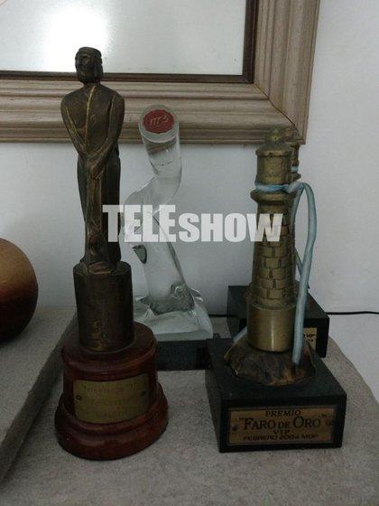 Los premios que Brian ganó en el rol de Gamuza